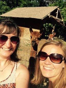 Alpaca selfie.